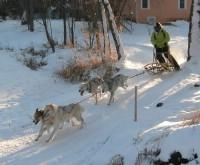 sled run 2.jpg